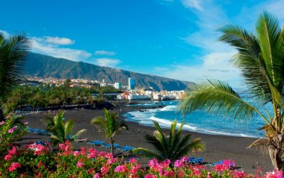 Life in the Canary Islands